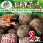 【福井県産】上庄里芋 頭(かしら) 3kg 種用・食用 送料無料!(沖縄・離島を除く)