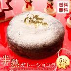 クリスマスケーキ 2020 半熟 ガトーショコラ 5号 送料無料 チョコレート Xmas ケーキ チョコ 予約 宅配 パーティー お取り寄せ ギフト プレゼント