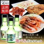 父の日 プレゼント ギフト ギフトランキング 2018 送料無料 日本酒 越後の銘酒 日本酒三選飲み比べと選べるおつまみセット 塩辛 鮭とば