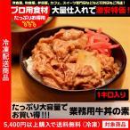 業務用 まとめ買いOK!業務用でボリュームたっぷり牛丼の素1kg(5400円以上まとめ買いで送料無料対象商品)(lf)