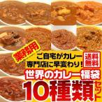 ショッピングカレー (送料無料)業務用カレー 世界のカレー福袋10種類入り (xn)