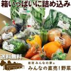 (送料無料)野菜セット 岩沼みんなの家のみんなの直売!野菜