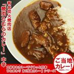 カレー 炭火焼肉たむらのお肉が入ったカレー中辛 5個セット ご当地カレー(xn)