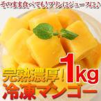 冷凍食品 - マンゴー 業務用 完熟冷凍ダイスカットマンゴー 500g×2個  フルーツ(mt)