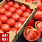 送料無料 トマト 桃太郎トマト 1ケース 約4kg とまと(gc)