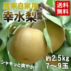 果物 梨 詰め合わせ ギフト ギフトランキング 送料無料 農家自家用 幸水梨2.5kg 7〜9玉 なし(gn)