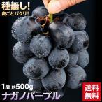 送料無料 ぶどう ブドウ 葡萄 ナガノパープル 1房 500g(gn)