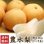 梨 送料無料 なし ナシ 茨城県産もしくは千葉県産 豊水梨 2.5kg 7〜9玉(gn)