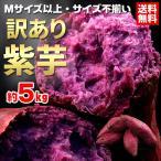 送料無料 野菜 さつまいも  紫芋 約5kg むらさき芋 秋の味覚(gn)
