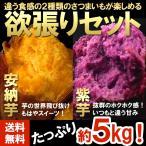 送料無料 訳あり さつまいも 安納芋&紫芋セット 計5kg (gn)