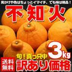 ショッピングフルーツ 送料無料 訳あり デコポン 約3kg わけあり ワケアリ 訳アリ みかん 不知火 (gn)