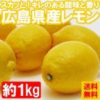 送料無料 レモン 国産 広島県産レモン約1kg れもん ノーワックス(gn)