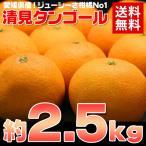 ショッピングみかん 送料無料 愛媛 清見タンゴール約2.5kg みかん オレンジ フルーツ 旬 果物(gn)