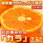 ショッピングみかん 送料無料 カラ カラマンダリン約2.5kg 柑橘 春みかん(gn)
