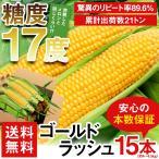 送料無料 訳あり わけあり ワケあり とうもろこし 農家自家用ゴールドラッシュ15本(gc)