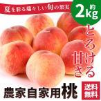 お中元 御中元 桃 ギフト 送料無料 フルーツ 果物 桃 とろける甘さ 農家自家用もも 8〜9玉 約2kg