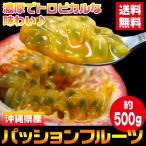 送料無料 沖縄県産 国産パッションフルーツ 約500g(gn)
