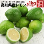 送料無料 レモン 檸檬 高知県産レモン 1kg(gn)