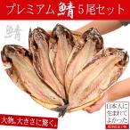 干物, 薫製 - 干物 鯖 送料無料 サバ干物5枚セット さば お取り寄せ ギフト 肉厚 大きすぎる 規格外 (nkk)