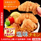 ショッピングから からあげ から揚げ 唐揚げ ジューシー塩味チキン 冷凍 鶏 とり (5400円以上まとめ買いで送料無料対象商品)(lf)