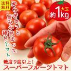 送料無料 茨城県産 糖度9以上保証 スーパーフルーツトマト 約1kg とまと 高糖度(mn)