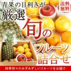 送料無料 季節の旬のフルーツが届く 目利きのプロ厳選 毎月変わる!フルーツ詰合せセット