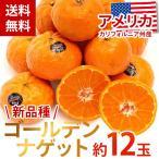 ショッピングみかん 送料無料 希少 ゴールデンナゲット約12玉 みかん 新品種 柑橘類 数量限定 市場直送(mn)