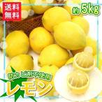 送料無料 レモン約5kgセット防カビ剤不使用 ジュース野菜ジュース