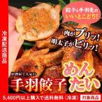 餃子 手羽餃子めんたい味10個入り 鶏肉 手羽先 めんたいこ ギョウザ ぎょうざ(5400円以上まとめ買いで送料無料対象商品)(lf)アウトレット