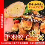 餃子 手羽餃子チーズ味10個入り 鶏肉 手羽先 チーズ ギョウザ ぎょうざ(5400円以上まとめ買いで送料無料対象商品)(lf)