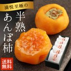 お中元 ギフト 送料無料 フルーツ 果物 和歌山県 産地直送 あんぽ柿5個入り カキ
