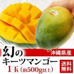 送料無料 フルーツ 沖縄県産 幻のキーツマンゴー 1玉 500g以上 緑 マンゴー 芒果(gc)