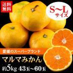 送料無料 フルーツ みかん 愛媛県 マルマみかん 約5kg ブランド 真穴  美味しいみかん(gn)