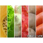 其它 - 安心の有機JAS 送料無料 有機野菜の実力を!大地の恵みお試しセット(ft)