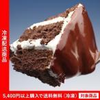 チョコレートケーキ 禁断の生ザッハトルテ(5400円以上まとめ買いで送料無料対象商品)(lf)