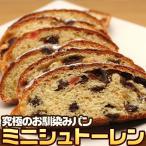 究極のパン ミニシュトーレン 菓子パン (pn)
