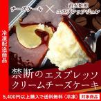 起司蛋糕 - チーズケーキ 禁断のエスプレッソクリームチーズケーキ(5400円以上まとめ買いで送料無料対象商品)(lf)