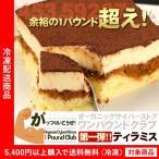 ティラミス 1ポンドティラミス 約500g ケーキ 1パウンド (5400円以上まとめ買いで送料無料対象商品)(lf)