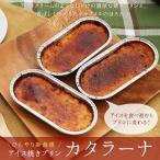 アイス 焼きプリン カタラーナ4個セット ぷりん お取り寄せ(cn)