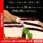 チーズケーキ ブルーベリーレアチーズケーキ ケーキ ギフト  お取り寄せ ギフト (5400円以上まとめ買いで送料無料対象商品)(lf)