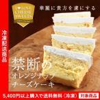 チーズケーキの常識を覆す新作チーズケーキ