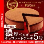 チョコレート 濃厚ベルギーチョコレートケーキ 5号 ベルギーチョコレート約11.1%使用(5400円以上まとめ買いで送料無料対象商品)(lf)