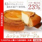 バウムクーヘン チーズインザバウム ムッシュフロマージュ チーズケーキ ギフト プレゼント スイーツ(5400円以上まとめ買いで送料無料対象商品)(lf)