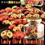 バレンタイン 2017 チョコレート 友 幸せの黄色てんとう虫&赤色てんとう虫 Lady bird chocolate 80匹 (vj)