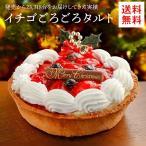 クリスマスケーキ 2017 送料無料 フルーツタルト イチゴごろごろタルトケーキ5号サイズ ギフト プレゼント 予約