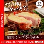 訳あり わけあり ハム 国産豚肉使用 チーズミートタル