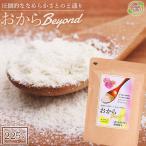 おからパウダー 国産 超微紛 大豆パウダー おからBeyond 500メッシュ 無添加 225g おからビヨンド Soy powder