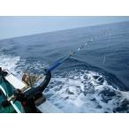中深海大物 グランドエボVersion 2/180-300号/タイプIG金 限定モデル (230010-IG)※ 釣り竿 ロッド