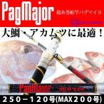 パグマイヨ (PagMajor)大鯛 大ヒラメ 青物兼用総糸巻 PagMajor 250-120号 (290004)ゴクスぺ 釣り竿 船竿 マダイ