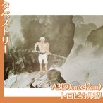 タペストリーA3 川合玉堂(No.1~20) トロピカル製